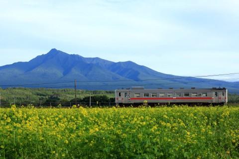 釧網線リベンジ