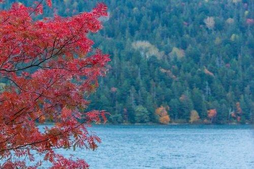 秋色 ~ 然別湖
