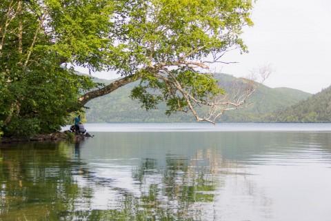 避暑〜然別湖へ