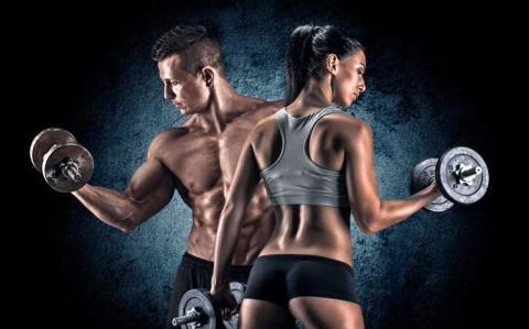 【解剖の復習】紹介した筋肉のリンク集