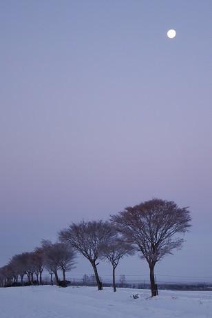 カメラスケッチ~氷点下18度の朝