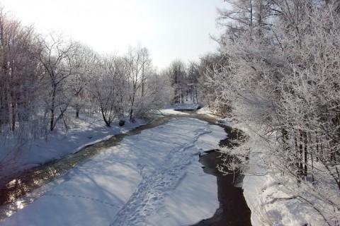 今冬、雪多くネ!?
