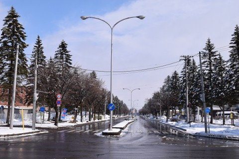 雪の緑ケ丘公園