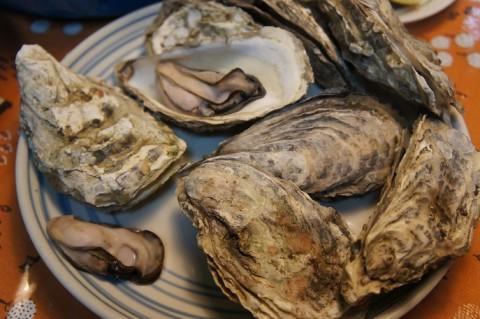厚岸の牡蠣が届きました~♪