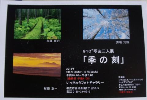 芸術の秋~♪