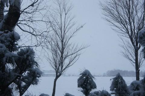帯広・十勝に冬が来た感じ