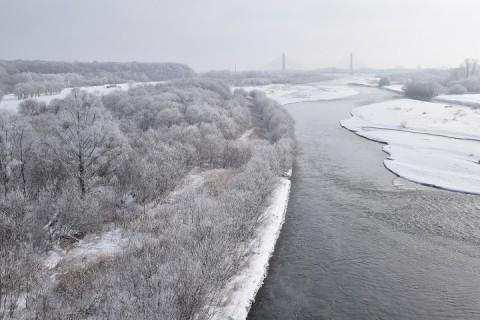 十勝川の霧氷