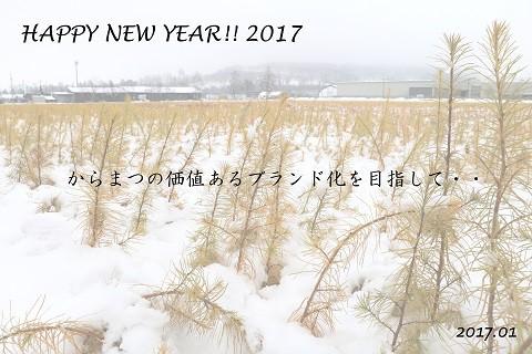本年もよろしくお願い致します!
