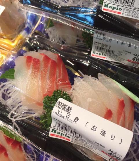 \\ 愛媛県産 【 鶏 魚】 //