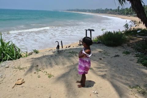 2015年インド・スリランカ旅行記・17