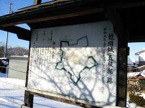 長野県の五稜郭(龍岡城)