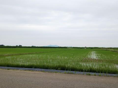 日本一の長距離貨物列車 札幌→福岡