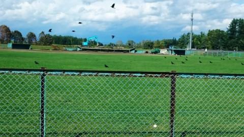 清水町民野球場営業終了