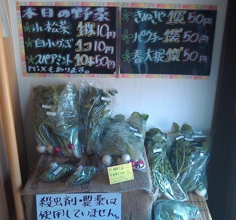 本日の野菜♪
