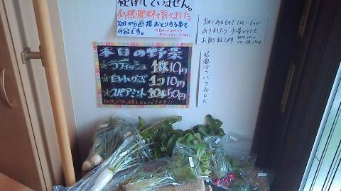本日の激安野菜達(^ー^* )