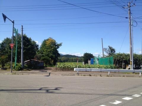 商談中のお知らせ:【売土地】遠くに日高山脈が広がる土地、167.99坪