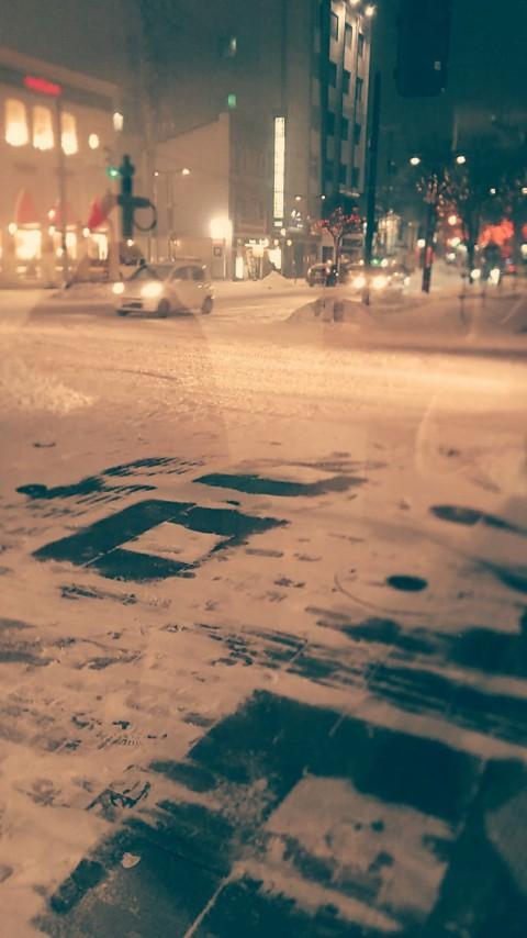 またしても雪。