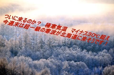 今週末は、超一級の寒波に要警戒!! 要注意!! 30℃超えになるか!?