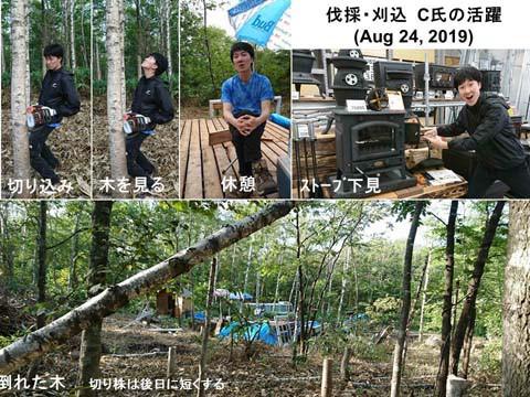 伐採・刈込 4 (C氏の来訪)
