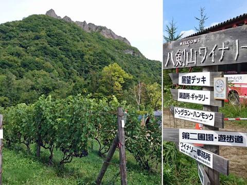 八剣山ワイナリー・焚き火キャンプ場